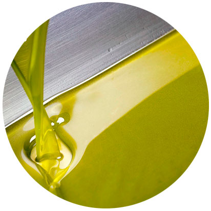 recoleccion aceite oro del desierto almeria